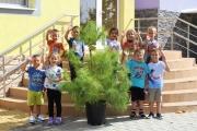 За новата учебна година Община Панагюрище дари живи дръвчета на всички учебни заведения